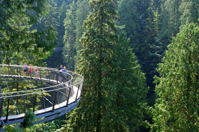 288114 1779467261382 2059567 o Vancouver's Capilano Suspension Bridge Park กิจกรรมสำรวจธรรมชาติและชมวิวจากบนยอดต้นไม้