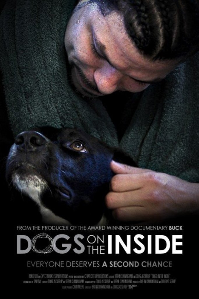 Dog on the side 5_poster