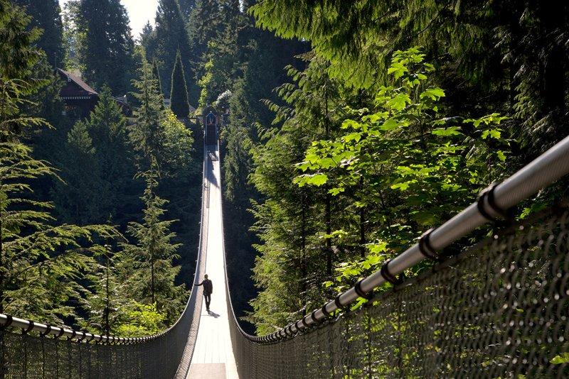 Gallery Capilano Suspension Bridge Vancouver's Capilano Suspension Bridge Park กิจกรรมสำรวจธรรมชาติและชมวิวจากบนยอดต้นไม้