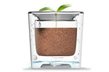 กระถางประหยัดน้ำ รีไซเคิลน้ำทุกหยด 6 - Flower pot