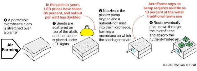 เปลี่ยนโรงงานเหล็กเก่ามาเป็นสวนผักแนวตั้งที่ใหญ่ที่สุดในโลก 19 - Farm