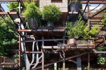 อาคารที่ปกคลุมด้วยสนิมเหล็กและต้นไม้สีเขียว เสมือนกับบ้านต้นไม้