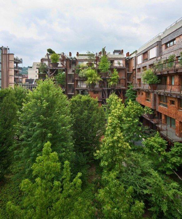 อาคารที่ปกคลุมด้วยสนิมเหล็กและต้นไม้สีเขียว เสมือนกับบ้านต้นไม้ 19 - Apartment