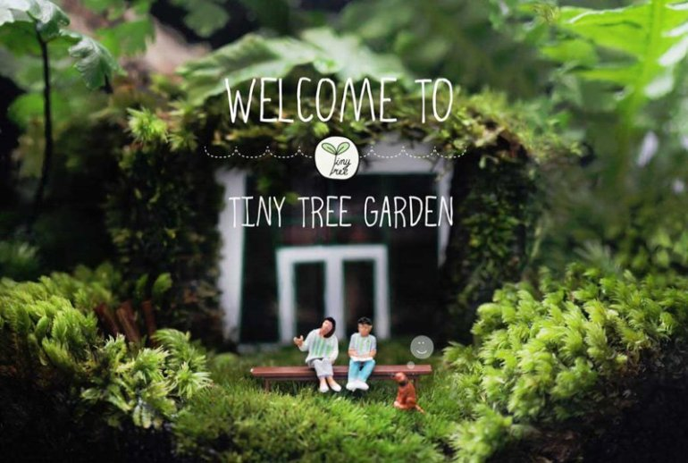 Tiny Tree Garden โลกสีเขียวใบเล็ก 13 - Cute Cactus