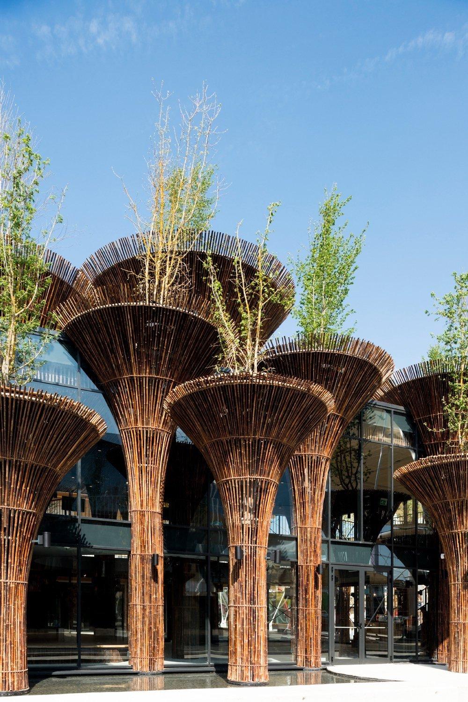 สร้างเมืองให้เหมือนป่า เพิ่มพลังชีวิตให้เมือง Vietnam Pavilion – Milan'15 19 -