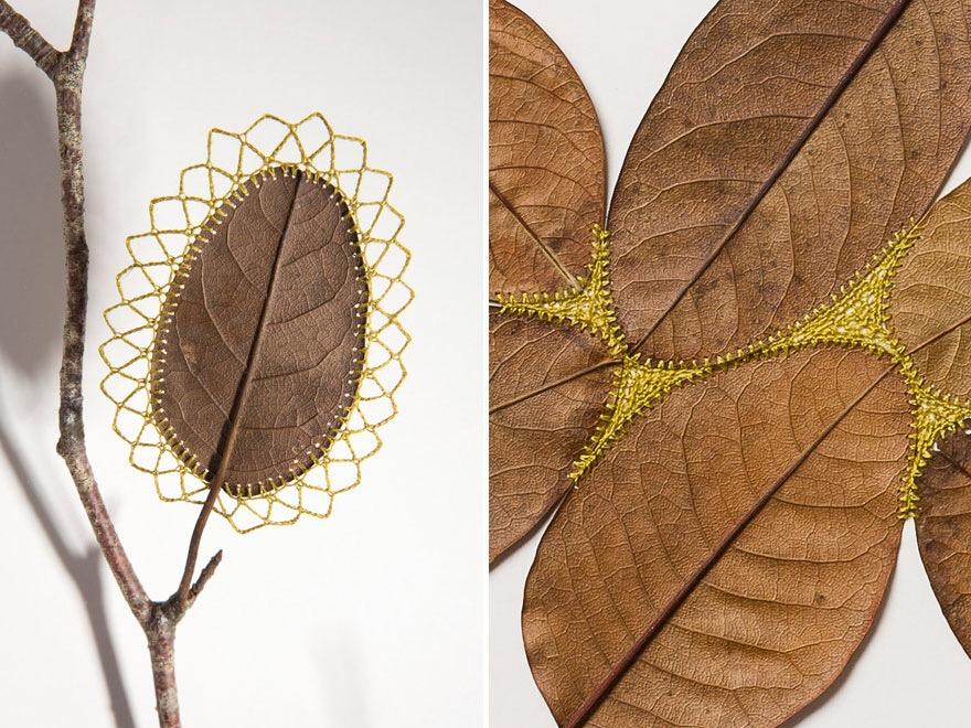 ศิลปะการถักทอ บนใบไม้.. สมดุลระหว่างความบอบบาง และแข็งแกร่ง 23 - Art & Design