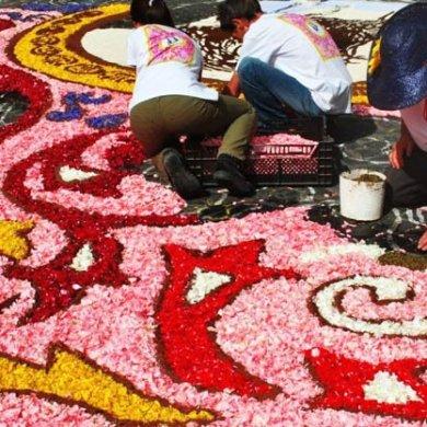 Genzanodi Roma Flower Festival เทศกาลปูพรมดอกไม้ทั่วถนนย่านเมืองเก่าแก่ 20 - Art & Design