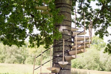 CanopyStair..ปีนบันไดขึ้นต้นไม้..