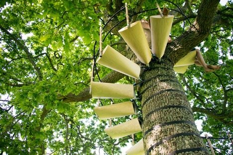 CanopyStair..ปีนบันไดขึ้นต้นไม้.. 21 - Royal College of Art