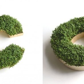 DIY : ปลูกต้นไม้ให้เป็นตัวอักษร 18 - Monogram