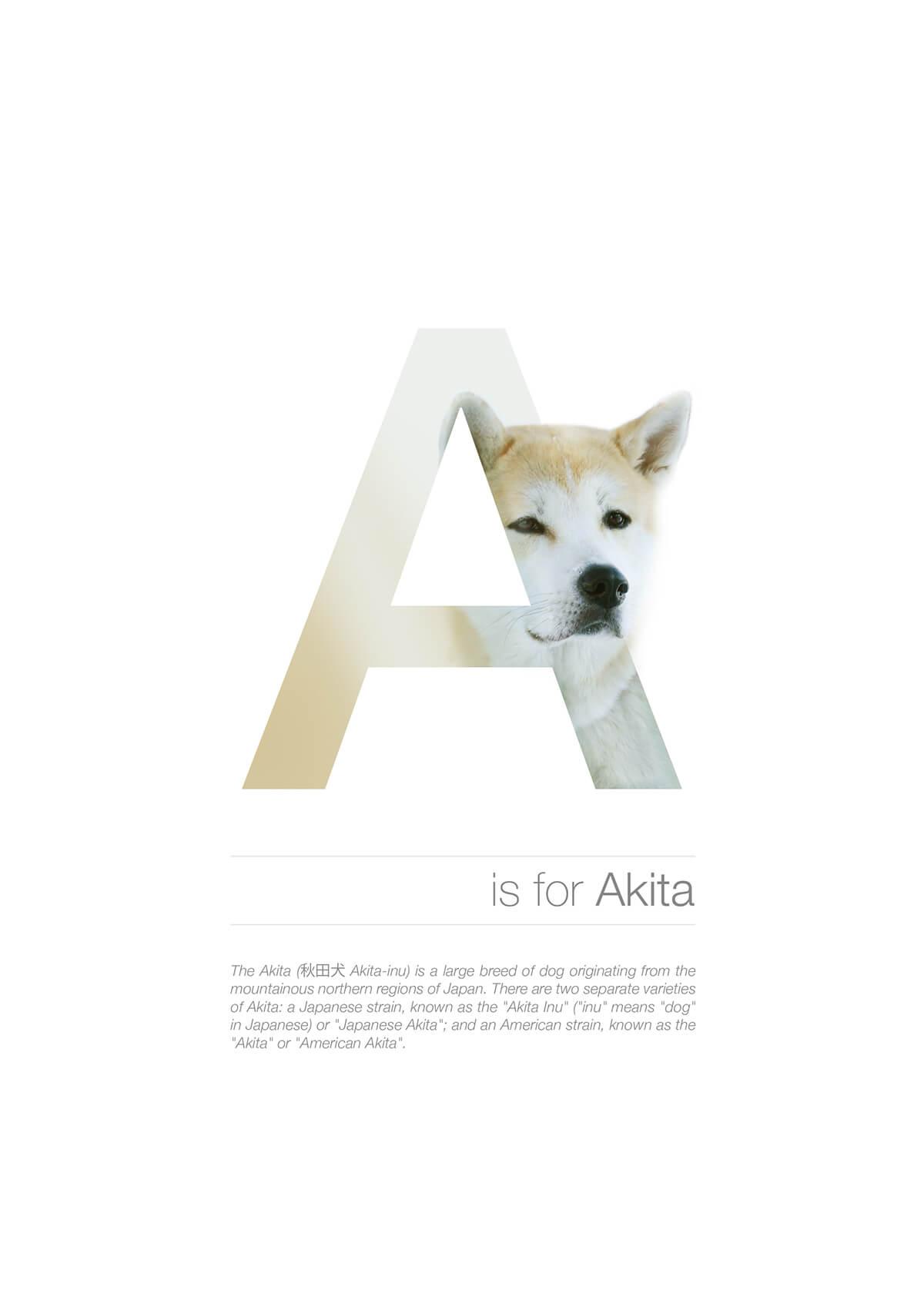 A ตัวอักษรกราฟฟิค A Z สายพันธุ์หมาไอเดียน่ารักจากดีไซน์เนอร์โรมาเนีย