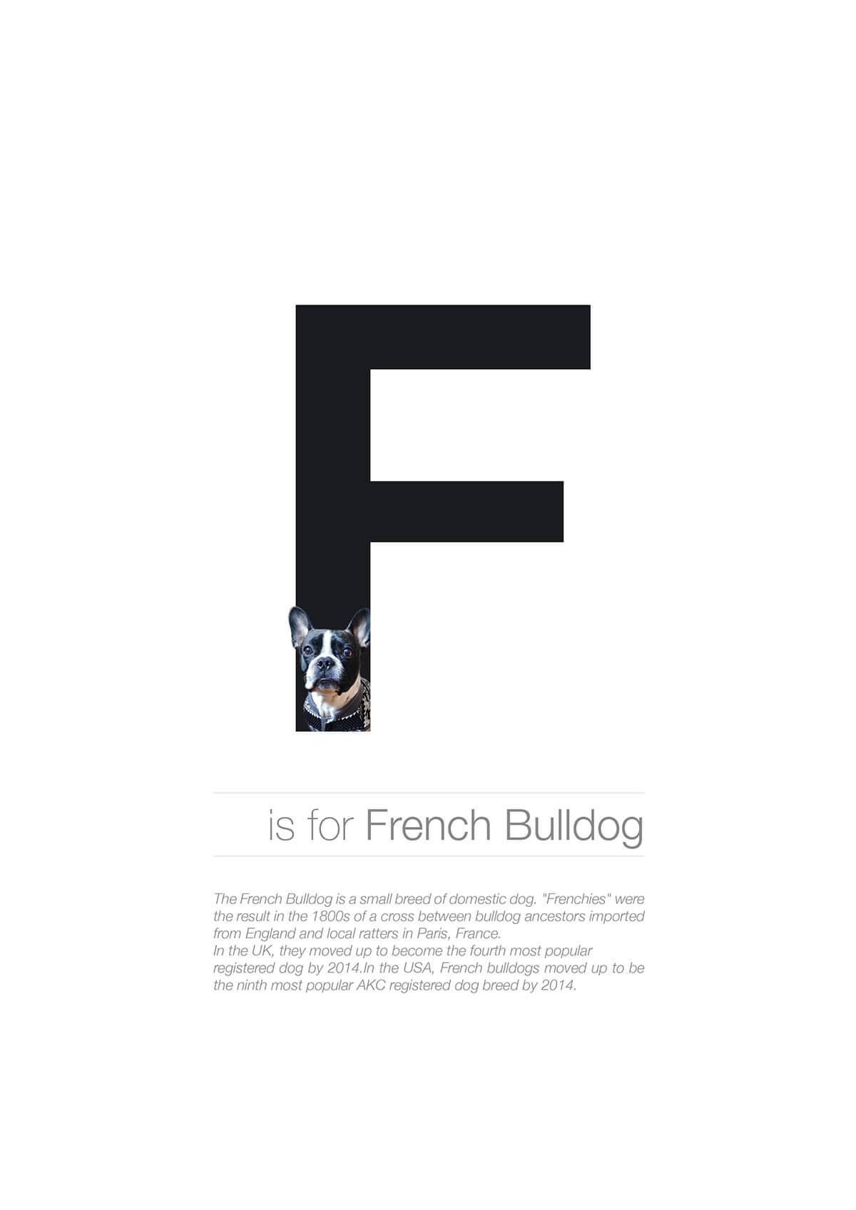 F ตัวอักษรกราฟฟิค A Z สายพันธุ์หมาไอเดียน่ารักจากดีไซน์เนอร์โรมาเนีย