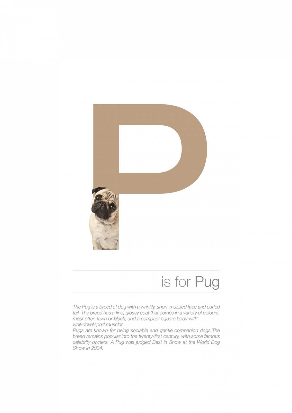 P ตัวอักษรกราฟฟิค A Z สายพันธุ์หมาไอเดียน่ารักจากดีไซน์เนอร์โรมาเนีย