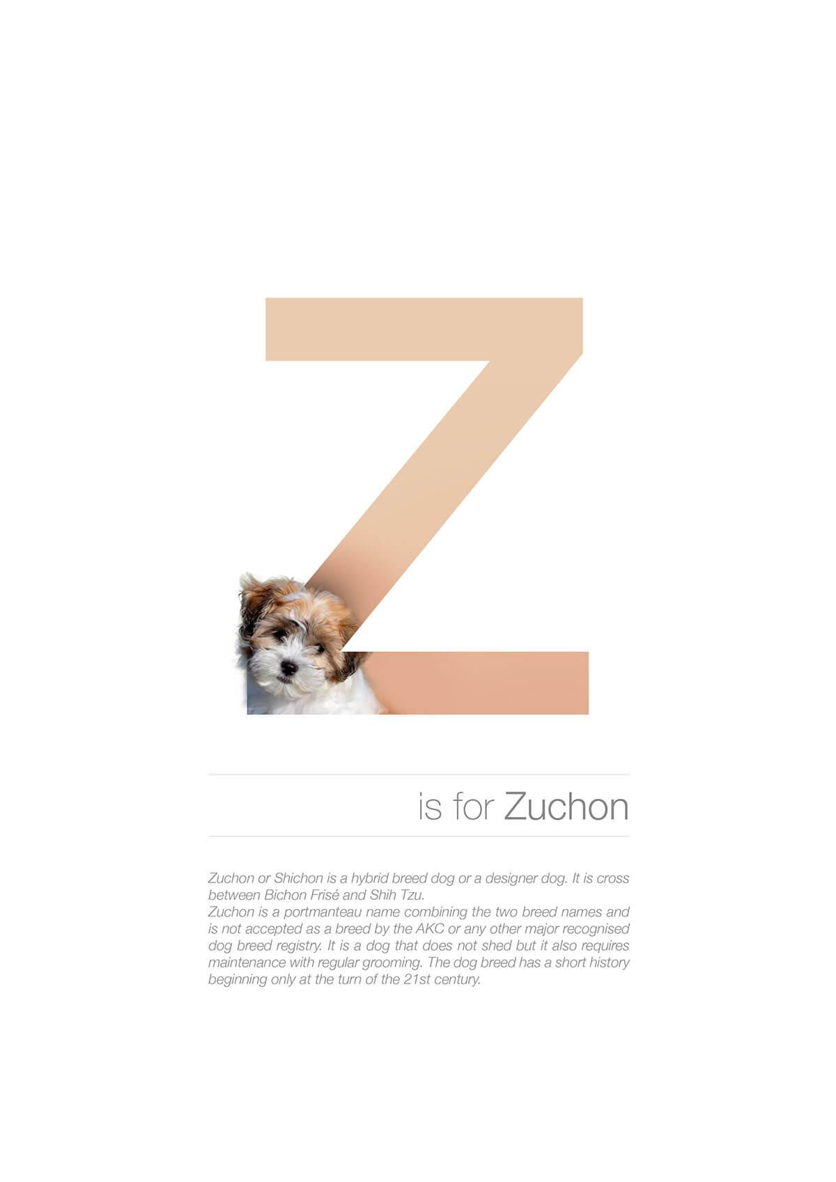 Z ตัวอักษรกราฟฟิค A Z สายพันธุ์หมาไอเดียน่ารักจากดีไซน์เนอร์โรมาเนีย