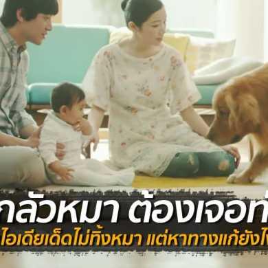"""ทำไงดีเมื่อ """"ลูกกลัวหมา"""" ไอเดียเริศของพ่อเด็กจากครอบครัวญี่ปุ่น 28 - baby"""