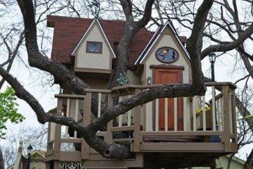 บ้านต้นไม้ในฝันของเด็กๆ หลายคน ลุงป้าสร้างอย่างสุดพลังเพื่อหลาน อลังการอย่างกับสวนสนุก 34 - PEOPLE