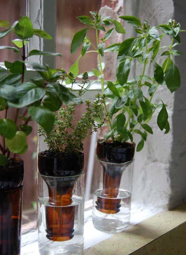 Mini-Indoor-Gardening-15