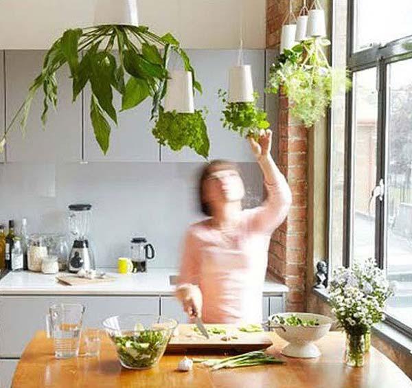 Mini-Indoor-Gardening-19