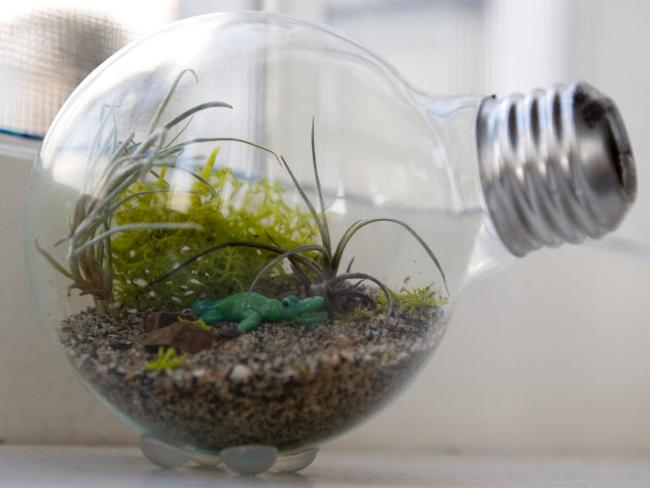 Credit: http://bulldogenergy.org/8-crafts-holidays-incandescent-light-bulbs/