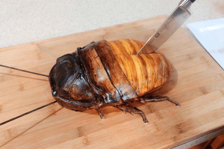 พ่อจอมโหด เซอร์ไพรส์วันเกิดลูกด้วยของขวัญที่ใครก็ต้องอึ้ง! 13 - cockroach