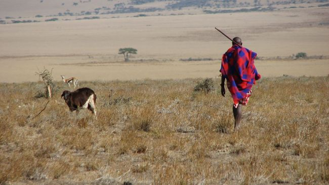 1200px Maasai man Eastern Serengeti October 2006 750x422 6 ชนเผ่ากับความงามบนร่างกาย ที่เห็นแล้วต้องร้อง OMG!