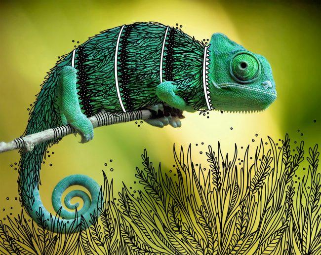 b2139d36918461.5752a773cfe28 650x517 ภาพสัตว์เดิมๆ เพิ่มเติมคือรอยยิ้ม งานวาดเล่นของ Rohan Sharad Dahotre