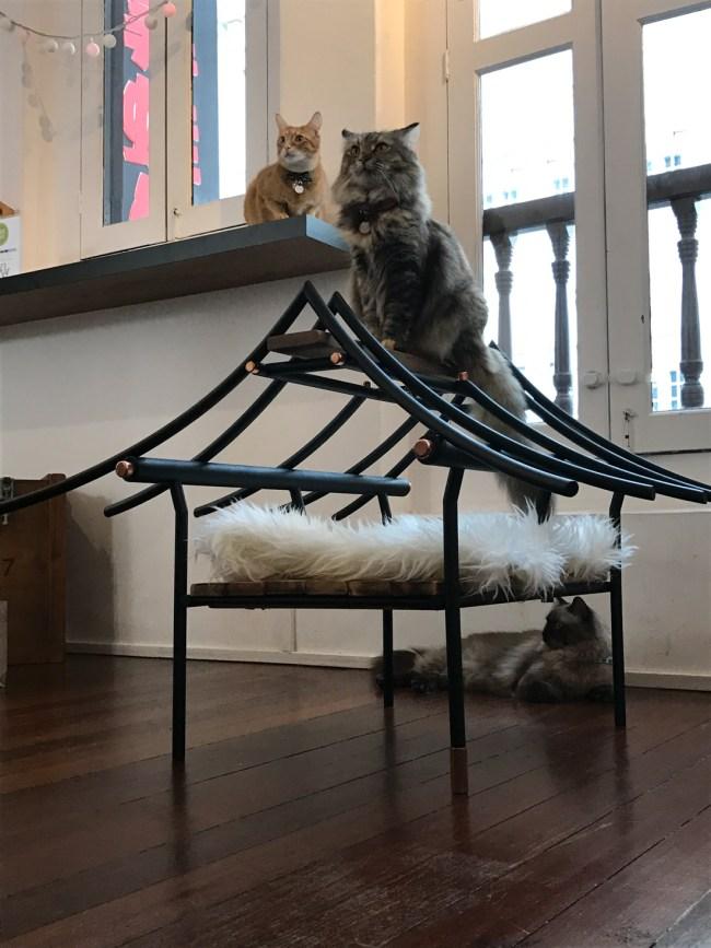 9Lives CatFurniture 7 650x867 ทาสแมวต้องร้องว้าว งานแสดงเฟอร์นิเจอร์สำหรับแมวโดยเฉพาะ