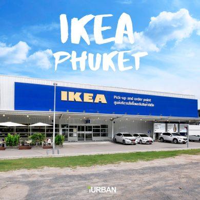 อิเกีย ภูเก็ต โฉมใหม่! ใหญ่กว่าเดิม! เพิ่มของใหม่หลายพันรายการ 18 - IKEA (อิเกีย)
