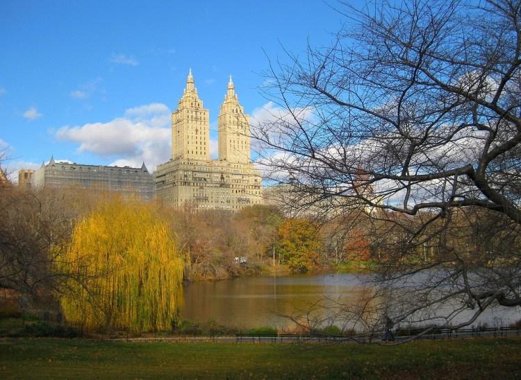 central park 1548357 1280 750x548 5 ทริคต้องรู้! ก่อนไปเที่ยว New York ที่ทำให้ประหยัดเงินไปได้กว่าครึ่ง!