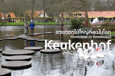 สวนเคอเคนฮอฟ (Keukenhof) เนเธอร์แลนด์ สวนดอกไม้หลายล้านดอก ที่ใหญ่ที่สุดในโลก 32 - TRAVEL