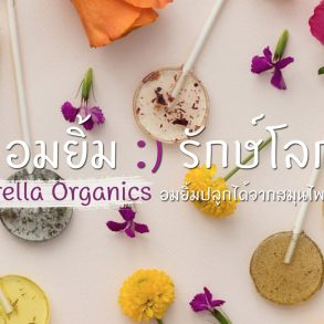 "Amborella Organics ""อมยิ้มห่วงใยโลก"" สีหวาน ปลูกได้ เบ่งบานเป็นต้นสมุนไพร 20 - Amborella Organics"