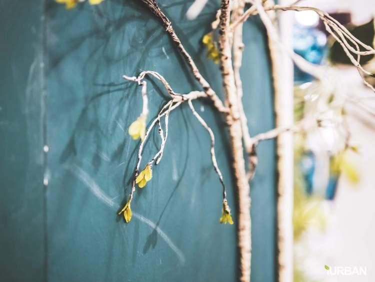 home basic95 750x563 8 วิธีตกแต่งบ้านให้ดูธรรมชาติแบบ Organic Living