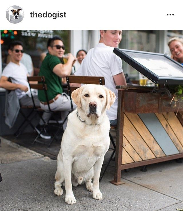 10 Instagram Accounts ไอจีคอนเทนต์ดี๊ดี ที่ควรค่าแก่การฟอลโล่!! 43 - IG