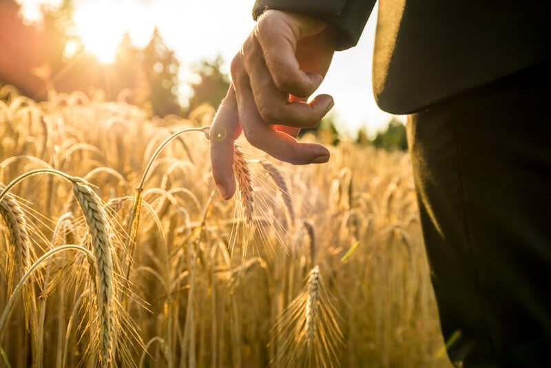 businessman walking through a golden wheat field PPHXE4J 1 1 เทคนิคเอาตัวรอดเมื่อหลายปัญหาเข้ามาพร้อมกัน ศิลปะการใช้ชีวิตที่น่าจะเป็นประโยชน์