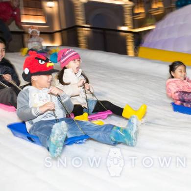Snow Town Special package Special Price 14 -