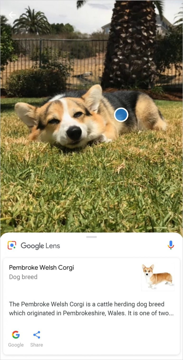 ฟังก์ชั่นกล้อง Xperia XZ2 รองรับฟีเจอร์ Google Lens แล้ววันนี้ 13 -