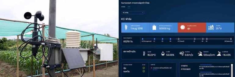 ล็อกซเล่ย์ ลุยสมาร์ทฟาร์มมิ่ง ชูเทคโนโลยี IOT Sensors เพื่อการเกษตรแห่งอนาคต 13 -