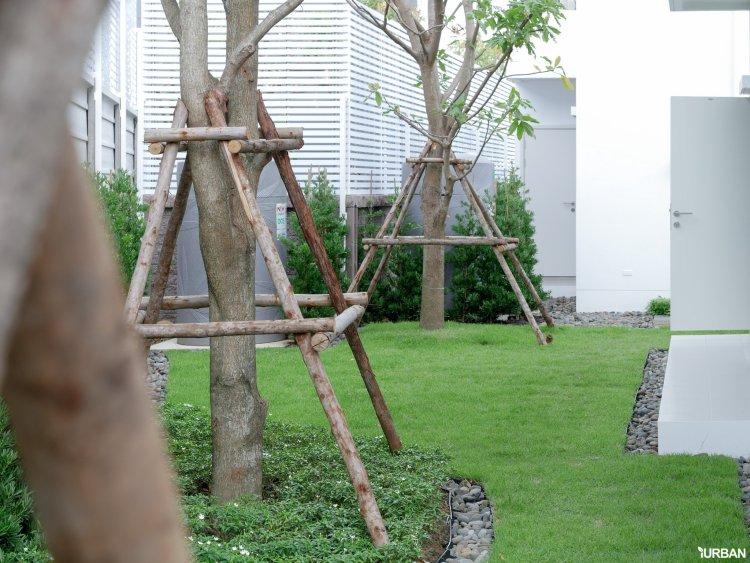 AIRI แอริ พระราม 2 บ้านเดี่ยว 4 ห้องนอน ออกแบบโปร่งสบายด้วยแนวคิดผสานการใช้ชีวิตกับธรรมชาติ 30 - Ananda Development (อนันดา ดีเวลลอปเม้นท์)