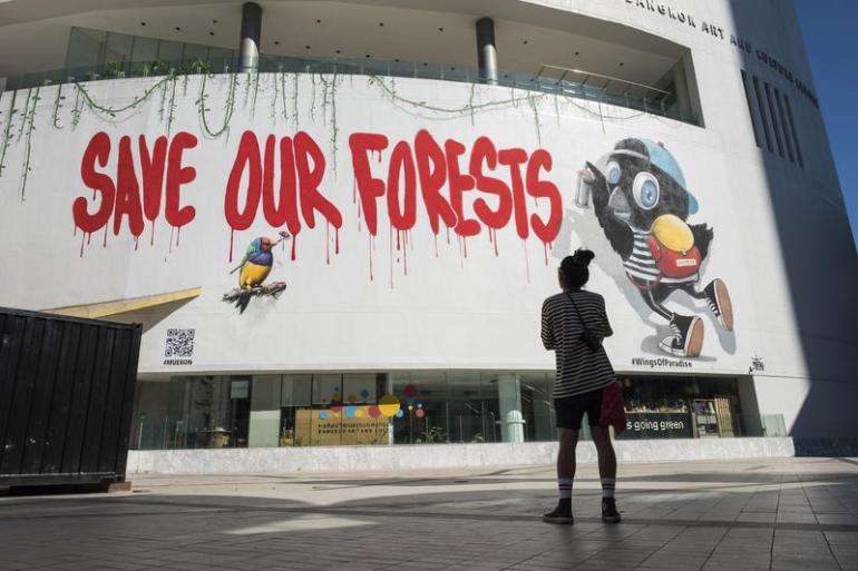 Wings of Paradise งานศิลปะบอกเล่าความจำเป็นเร่งด่วนในการปกป้องป่าฝนเขตร้อน 13 - Wings of Paradise