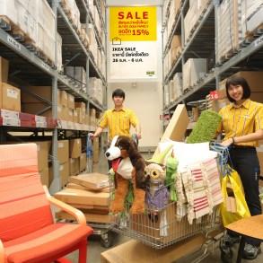 """อิเกีย จัดเต็มมอบของขวัญส่งท้ายปี """"IKEA YEAR-END SALE""""  พิเศษกว่าครั้งไหน! สมาชิก IKEA FAMILY ลดเพิ่มอีก 15%  26 ธันวาคม 61 – 6 มกราคม 62 16 - IKEA (อิเกีย)"""