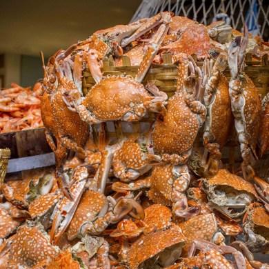 Crab'n Crew บุฟเฟ่ต์ปูไม่อั้น ที่ร้านอาหารเดอะแสควร์ โรงแรมโนโวเทล กรุงเทพ สีลม 15 -