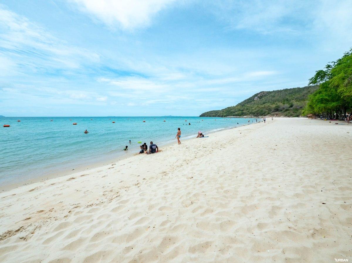 7 ชายหาดทะเลพัทยา ที่ยังสวยสะอาดน่าเที่ยวใกล้กรุงเทพ ไม่ต้องหนีร้อนไปไกล ก็พักได้ ชิลๆ 151 - Beach