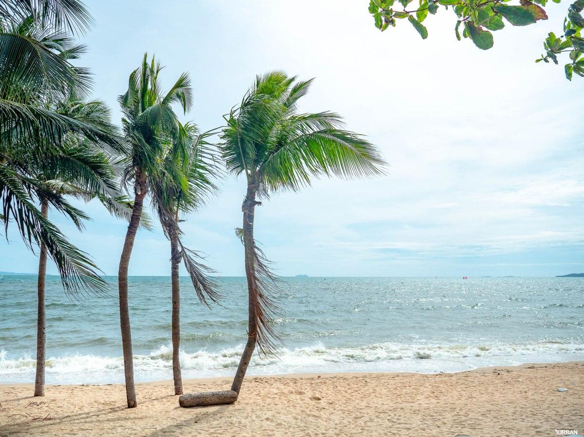 7 ชายหาดทะเลพัทยา ที่ยังสวยสะอาดน่าเที่ยวใกล้กรุงเทพ ไม่ต้องหนีร้อนไปไกล ก็พักได้ ชิลๆ 130 - Beach
