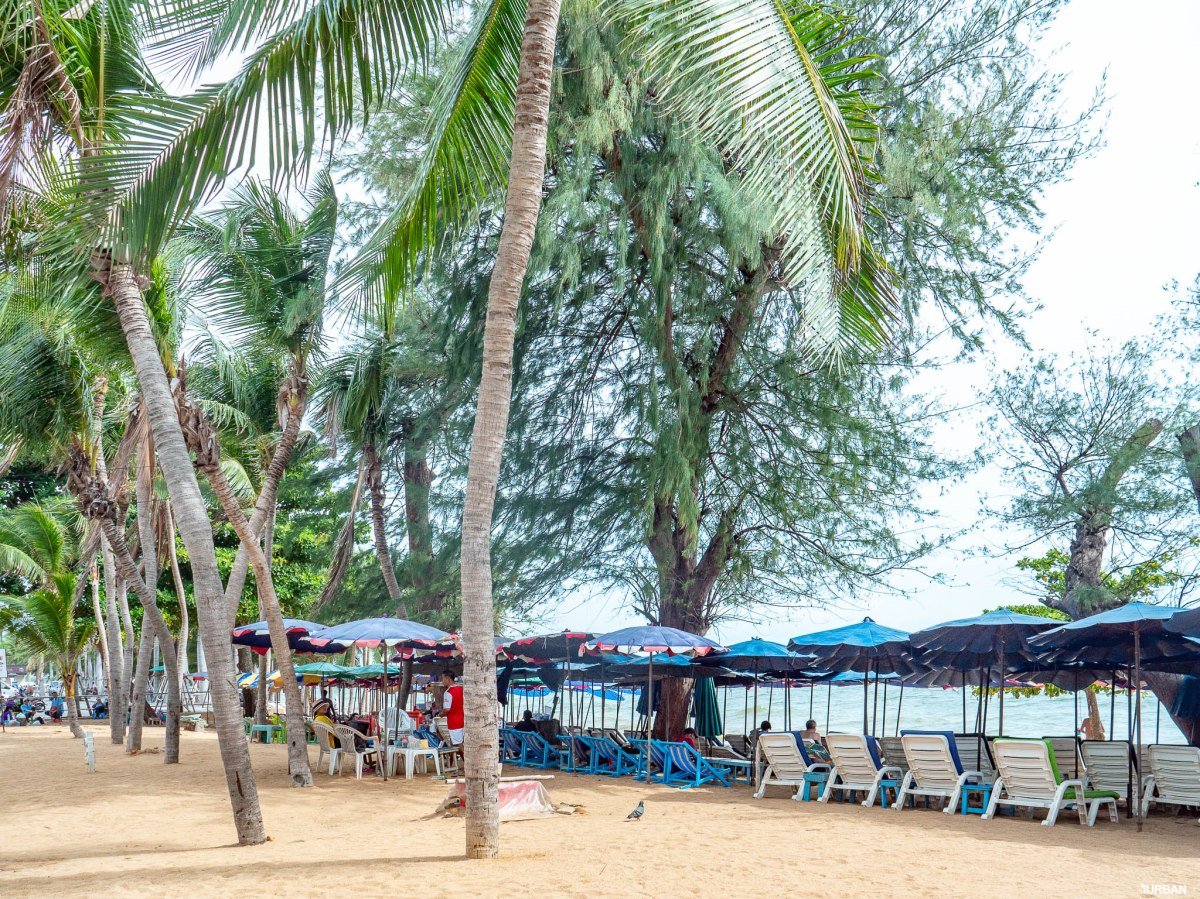 7 ชายหาดทะเลพัทยา ที่ยังสวยสะอาดน่าเที่ยวใกล้กรุงเทพ ไม่ต้องหนีร้อนไปไกล ก็พักได้ ชิลๆ 33 - Beach