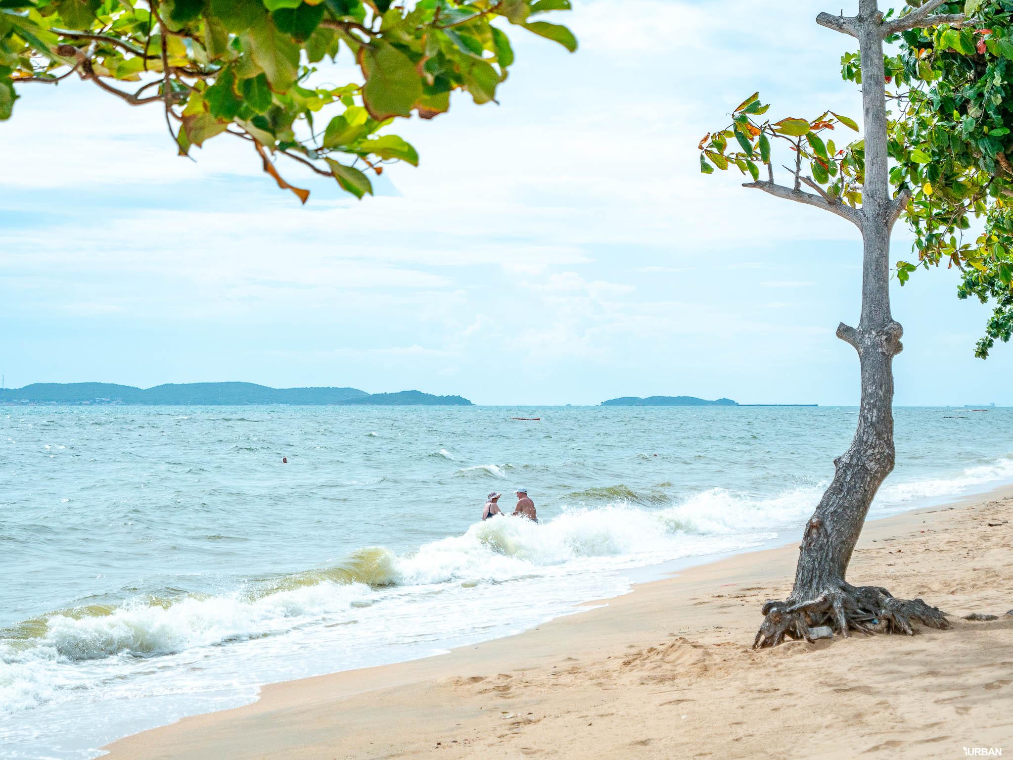 7 ชายหาดทะเลพัทยา ที่ยังสวยสะอาดน่าเที่ยวใกล้กรุงเทพ ไม่ต้องหนีร้อนไปไกล ก็พักได้ ชิลๆ 135 - Beach