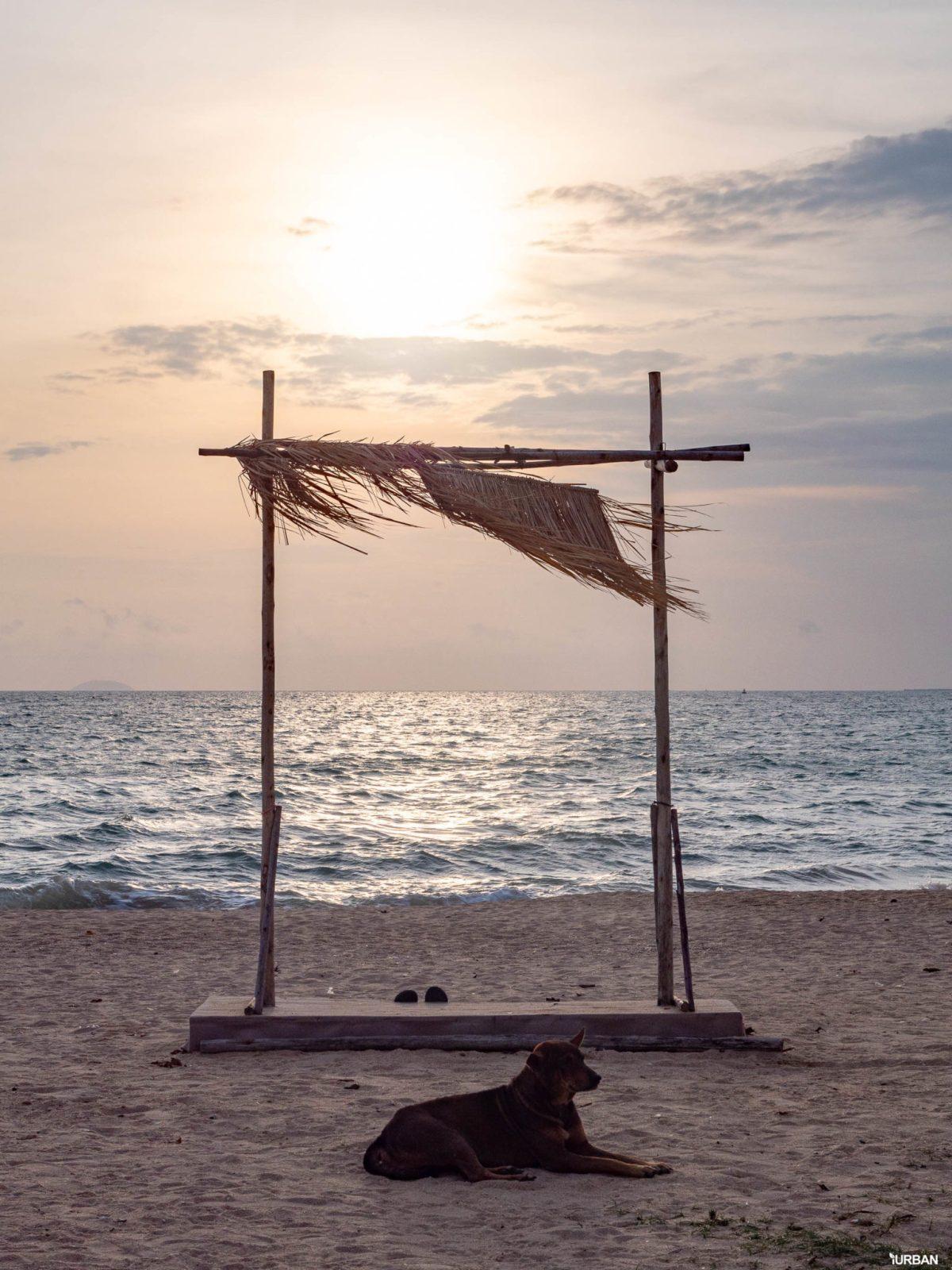 7 ชายหาดทะเลพัทยา ที่ยังสวยสะอาดน่าเที่ยวใกล้กรุงเทพ ไม่ต้องหนีร้อนไปไกล ก็พักได้ ชิลๆ 28 - Beach