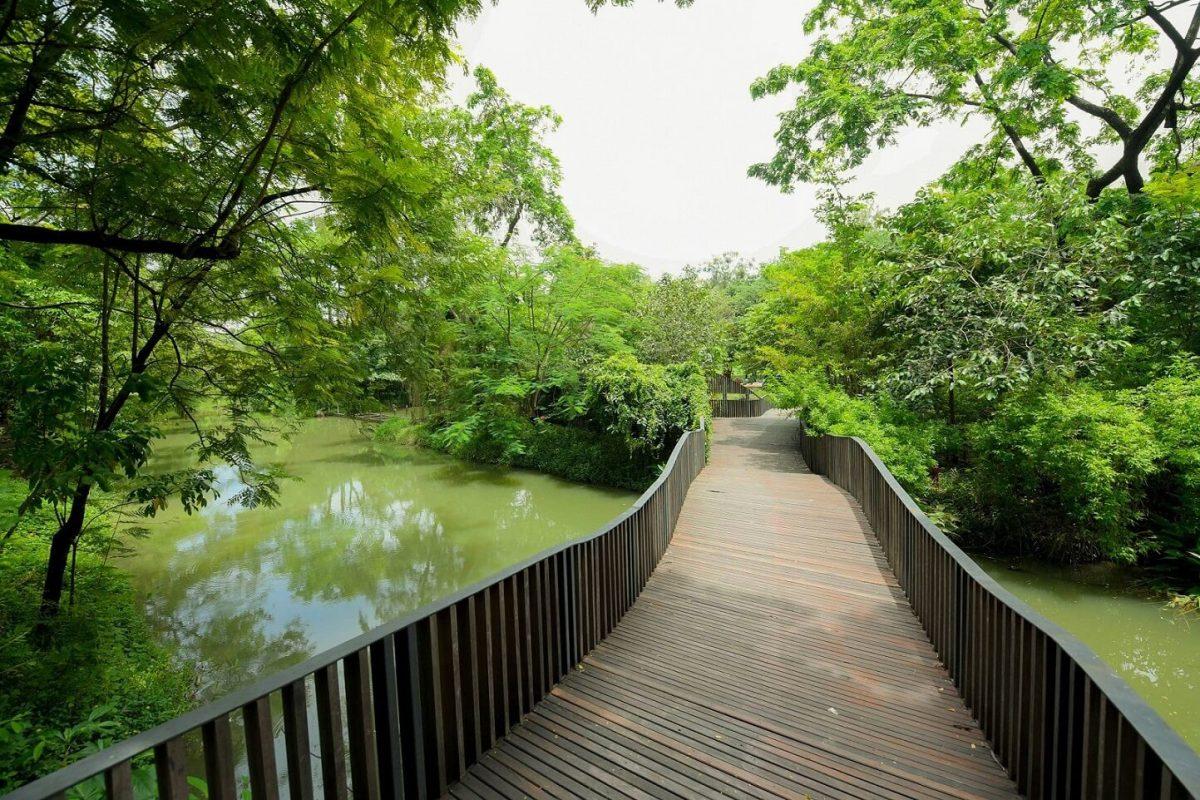 CHECK-IN...10 พิกัดแชะ @3 สวนสวยกลางเมือง ที่สายวิ่ง TMB | ING PARKRUN 2019 ไม่ควรพลาด! 19 -