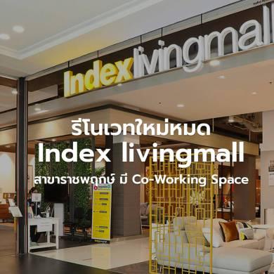 'อินเด็กซ์ ลิฟวิ่งมอลล์' สาขาราชพฤกษ์  ปรับโฉมใหม่หมด ชูแนวคิดปั้นแฟลกชิพสโตร์ 'ครบที่สุด ดีที่สุด ใหญ่ที่สุดเรื่องบ้าน' ใน กทม.โซนตะวันตก 20 - Index Living Mall (อินเด็กซ์ ลิฟวิ่งมอลล์)