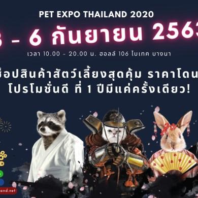 ชวนร่วมงาน Pet Expo Thailand 2020 ฉลองครบรอบ 20 ปี ขนไอเทมสัตว์เลี้ยงมาจัดแสดงอย่างยิ่งใหญ่ 14 - PetExpoThailand