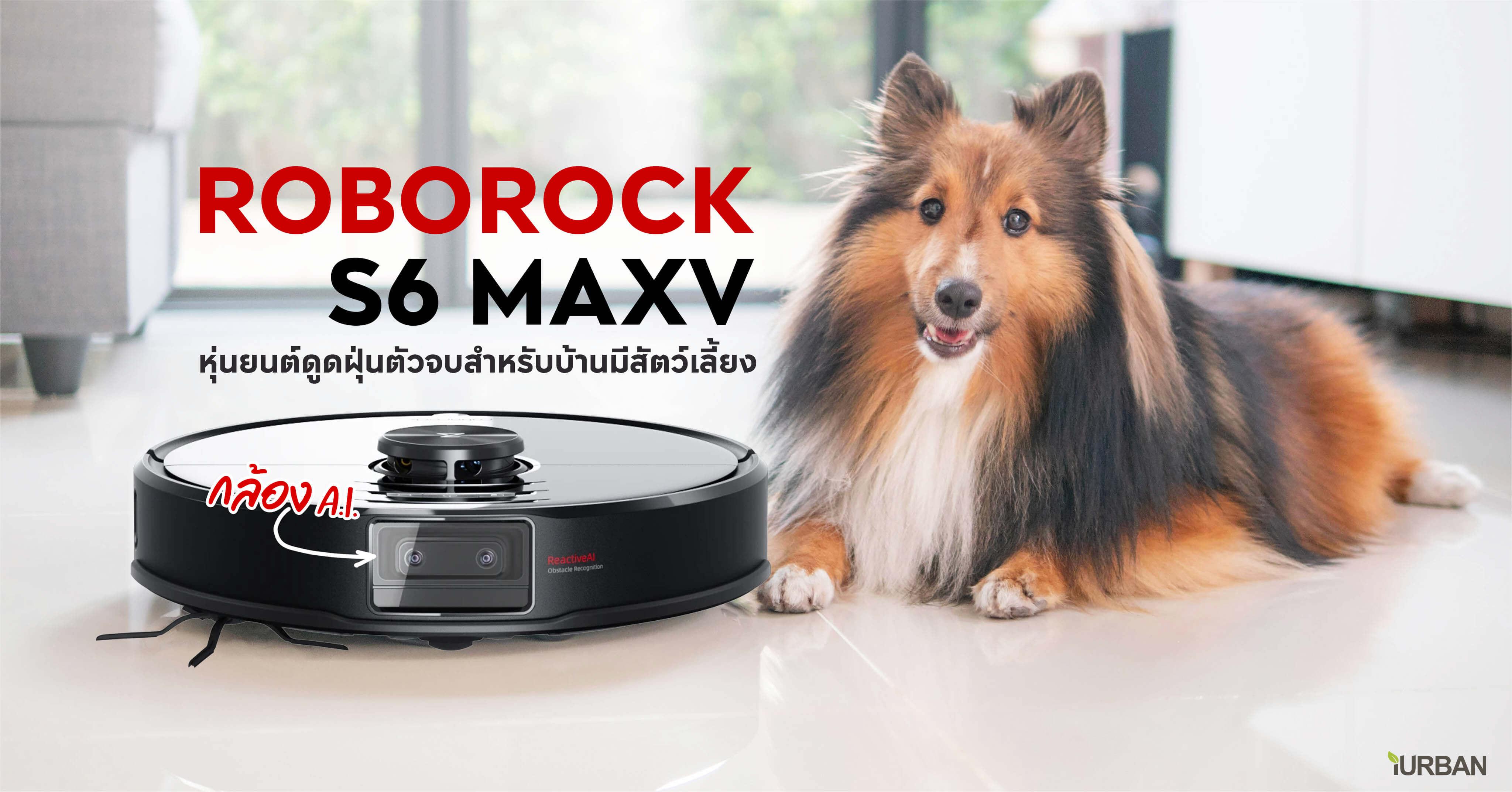 ROBOROCK S6 MAXV รีวิวหุ่นยนต์ดูดฝุ่นตัวท็อปพร้อมกล้อง A.I. ฉลาดขนาดหลบอึหมาได้ 13 - Automatic